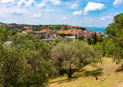 Collioure-vue-moulin